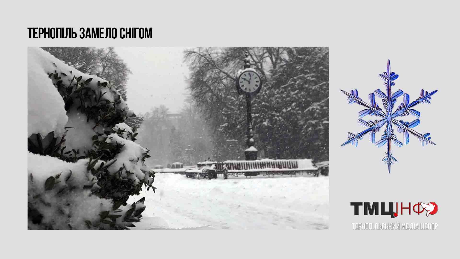 Тернопіль замело снігом